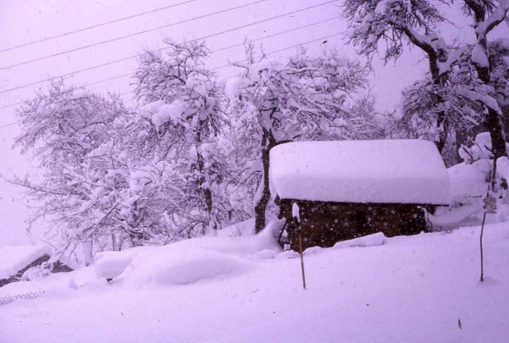Les hivers dans les années 1980.