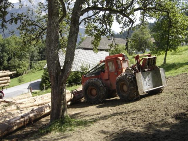 Rassemblement des bois en bordure de route.